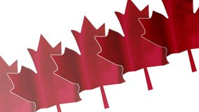 Canadian History: Our Evolving Identity