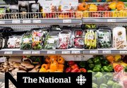 Health Canada's new food guide takes a radical overhaul