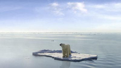 Can We Stop the Polar Apocalypse?