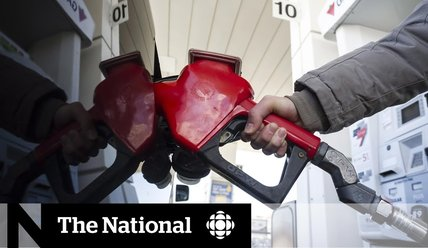 What you need to know about the federal carbon tax