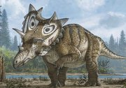 Judith: New dinosaur species with an interesting story