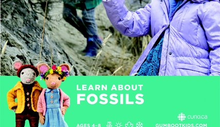 Learn about Fossils - Gumboot Kids Curriculum
