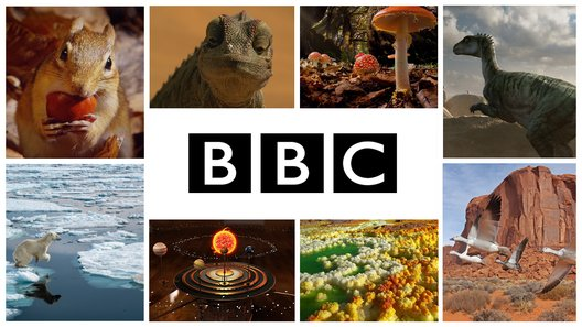 New BBC Channel