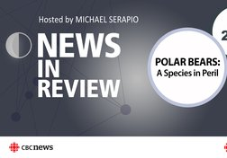 NIR-19-04 - PPT - Polar Bears: A Species in Peril