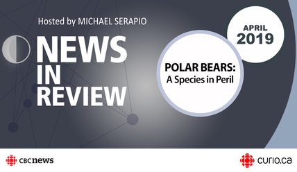 NIR-19-04 - PDF - Polar Bears: A Species in Peril