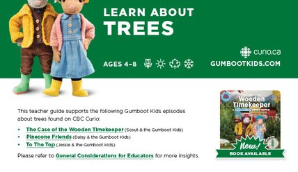 Learn about Trees - Gumboot Kids Curriculum