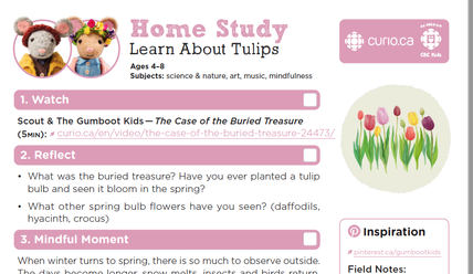 Tulips - Gumboot Kids worksheet