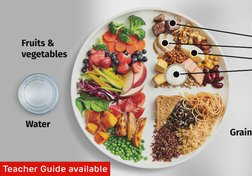 Canada's New Food Guide: Eating Healthier to Live Better