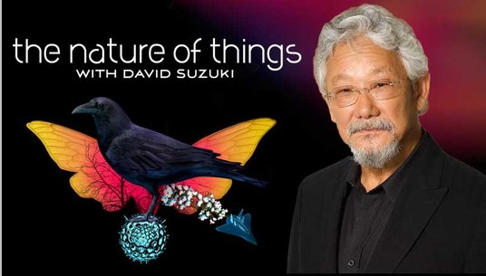 David Suzuki Autism