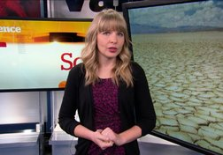 California's Drought: The Implications