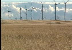 Eco Initiatives: Weathering Climate Change