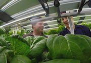New technology gets fresh food to remote Canadian communities