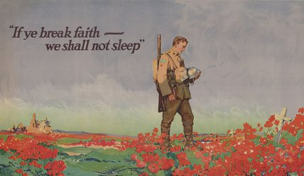 In Flanders Fields: A Century of Poppies