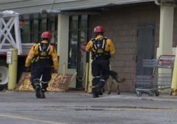 Elliot Lake Mall Collapse: A Preventable Tragedy?