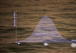 Normal distribution in fish populations